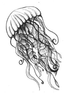jellyfish drawing (made by Linda den Hollander)