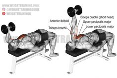 Best chest exercises for lower and upper chest | Weight Training Guide Best Shoulder Workout, Best Chest Workout, Chest Workouts, Chest Exercises, Fitness Workouts, Weight Training Workouts, Dumbbell Workout, Bodybuilding Training, Bench Press