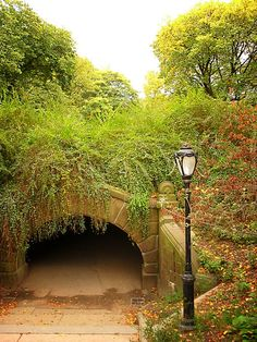 Central Park, New York City - I'm pretty sure I have seen several movies where someone DIED under that very bridge!!!!