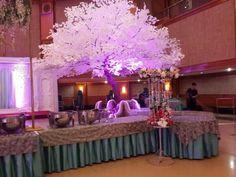 Winter indoor reception