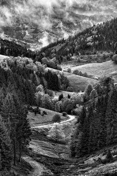 Winding Road by Micha de Vries, via 500px