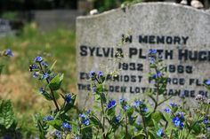 Sylvia Plath    Even amidst fierce flames the golden lotus can be planted.