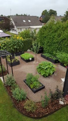I'm loving the black planter boxes! Veg Garden, Vegetable Garden Design, Garden Trellis, Garden Cottage, Garden Pots, Front Garden Landscape, Permaculture, Garden Planning, Garden Inspiration