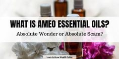 What is Ameo Essential Oils? Absolute Wonder or Absolute Scam? Crochet Hair Styles, How To Find Out, Essential Oils, Essentials, Online Reviews, Garden Styles, Learning, Opportunity, Friends