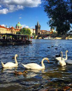 Prague | Czech Republic (by Nacho Coca) Follow me on Instagram