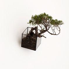Hanging Void 80 (Handmade) | 1012 | Terra