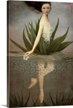 Catrin Welz-Stein Premium Thick-Wrap Canvas Wall Art Print entitled Waterlily, None