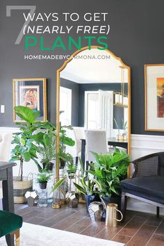 Looking to fill your home with houseplants? Let