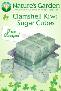 Free Clamshell Kiwi Sugar Cubes Scrub Recipe by Natures Garden