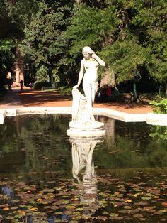Jardín botánico:::