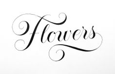 Flowers  #tanyacherkiz #letters #lettering #handlettering #typography #dailytype #sketches