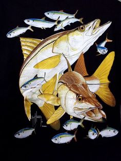 GUY HARVEY MENS XL BLK W FULL COLOR SNOOK GRAPHIC LOGO POCKET T-SHIRT S/S NEW #GUYHARVEY #GraphicTee