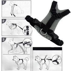 Perro mascota vehículo arnés seguridad asiento pecho correa accesorios para perros negro tamaño S: Amazon.es: Hogar