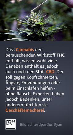 Der #Cannabis-Wirkstoff #Cannabidiol (#CBD) soll beruhigen und bei einigen gesundheitlichen Beschwerden helfen - ohne Rausch und ohne Rezept vom #Arzt. Doch Experten äußern Bedenken. Cannabis, Der Handel, Chewing Gum, Calm Down, Falling Asleep, Facts, First Aid, Knowledge, Recipe