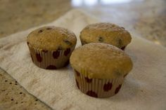 Gluten-Free Quinoa Breakfast Muffins | ModernMom.com