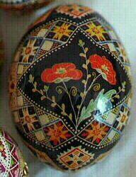 Poppy Flowers on chicken egg pysanka method