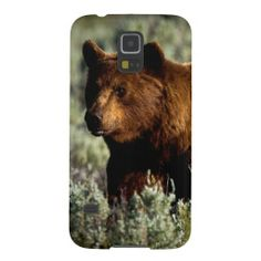 Grizzly Bear 2 Galaxy S5 Cases