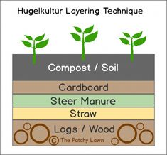 Gardening Compost The best way to plant raspberries using hugelkultur and permaculture principals, for drought tolerant, low maintenance and abundantly producing plants Indoor Vegetable Gardening, Organic Gardening, Container Gardening, Gardening Tips, Arizona Gardening, Sustainable Gardening, Permaculture Design, Mandala Garden, Raspberry Uses