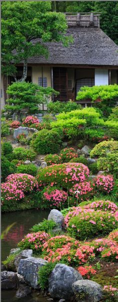 GARDEN AT TOJI TEMPLE IN KYOTO, JAPAN. What a joy seeing so many flowers!! #japanese #gardens SEE MORE ART NOW www.richard-neuman-artist.com