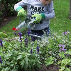 Le printemps, c´est la renaissance... Des plantes et des fleurs aux couleurs magnifiques enchantent les yeux des petits. Les gants protègent les petites menottes des épines, des ronces et de la terre. Dans le jardin ou dans les bacs à fleurs du balcon, les enfants pourront démontrer qu´ils ont la main verte avec cette paire de gants de jardinage adaptée à leurs petites mains ! Fallen Fruits, Esschert Design, Gardening Gloves, Child Love, Renaissance, Plants, Palm, Cuffs, Dots