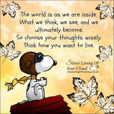The world is as we are inside. What we think, we see, and we ultimately become. So choose your thoughts wisely. Think how you want to live. Charlie Brown Quotes, Charlie Brown And Snoopy, Snoopy Images, Snoopy Pictures, Snoopy Love, Snoopy And Woodstock, Snoopy Quotes Love, Best Quotes, Funny Quotes