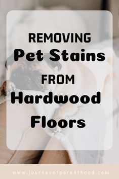 Removing pet stains from hardwood floors: cleaning hardwood floors with pets and getting out pee stains from dogs and cats. Window Cleaning Tips, Deep Cleaning Tips, House Cleaning Tips, Diy Cleaning Products, Cleaning Hacks, Cleaning Solutions, Pee Stains, Remove Stains, Clean Hardwood Floors