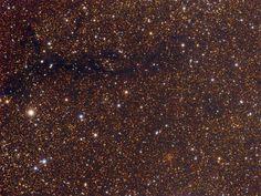Cúmulo Berkeley 52 y Nebulosa LDN 824. Berkeley 52 es un cúmulo abierto (parte inferior derecha) y LDN 824 es una nebulosa oscura; en la constelación Vulpecula.