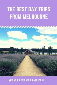 Day tours from Melbourne