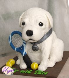 Sculpted Dog Cake.  Love the detail!