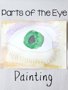 Parts of the Eye Diagram for 4th graders | Lesson 2 Grade ...