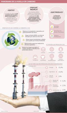 Cinco beneficios que gana su empresa al combatir la huella de carbono