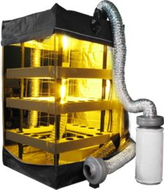 Grow your own herbs with Hydroponics - http://www.dealzer.com/cash-crop.html Buddha Box - 48 Plant Hydroponic Grow Tent #dealzer