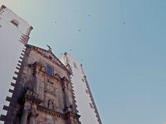 Los pájaros revoloteaban sin parar, estaban felices porque el cielo era azul y el sol brillaba mucho sobre la parte antigua de Cáceres.