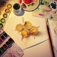 Physalis by me :)  #fixaroinstante #aguarela #watercolour #draw #drawing #art #filipacaires #physalis #paint