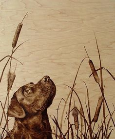 chocolate lab hunting dogs art | ... online art gallery for more photorealistic wood burning art works