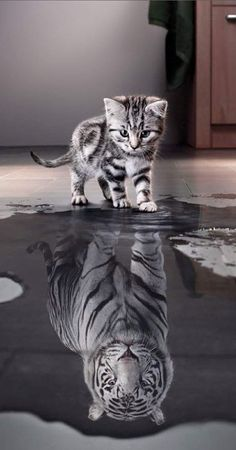 it's all about how you see yourself!