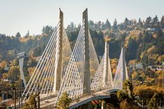Tilikum Crossing in Portland Won't Allow Cars - The Atlantic
