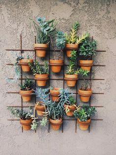 Végétaliser un mur