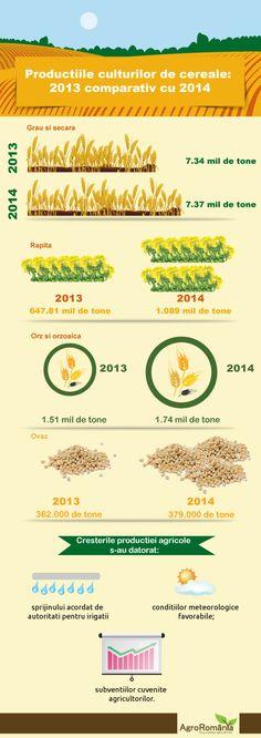 Productia de cereale din 2014 vs 2013 2013