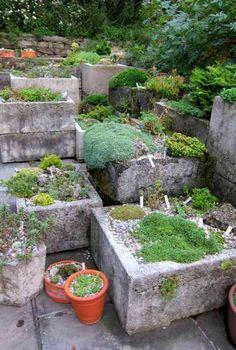 idée de jardin alpin moderne