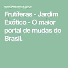 Frutíferas - Jardim Exótico - O maior portal de mudas do Brasil.