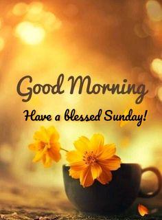 Sunday Morning Wishes, Good Morning Sunday Images, Good Morning Life Quotes, Morning Blessings, Have A Blessed Sunday, Have A Great Sunday, Good Morning Puppy, Music Memes Funny, Never Give Up