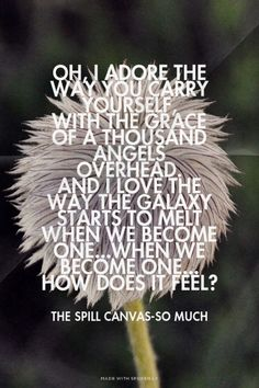 Oh, I adore the way you carry yourself, with the grace of a thousand angels overhead. and i love the way the galaxy starts to melt when we become one...when we become one... How does it feel? - The Spill Canvas-So Much   Sierra made this with Spoken.ly