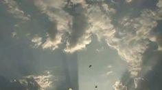 Free HD Background 4U [NO Copyright] :: Sunshine Sun Reflection Birds Cl...