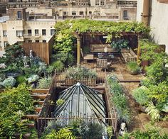Rooftop gardens are awesome for the Environment! Learn why here: http://www.isfoundation.com/news/environment/greening-our-cities-rooftop-gardens