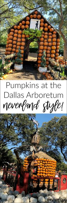 Last week I took a little solo trip to Dallas to see the pumpkins at the Dallas Arboretum! This year's theme was Neverland! Visit Dallas, Visit Slovenia, Dallas Arboretum, Cold Brew Coffee Maker, Start The Day, Vacation Places, Family Activities, Neverland, Travel Pictures