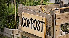 Als je echt duurzaam bezig wilt zijn in je tuin, moet je zelf compost maken. Daarmee is de kringloop rond. Groenafval uit keuken en tuin verwerk je tot rulle compost die weer teruggeeft aan de bodem en dat geeft enorm veel voldoening. Compost geeft voeding aan de tuin en verbetert de structuur van de bodem.…