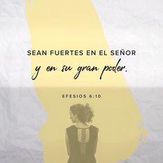 Finalmente dejen que el gran poder de Cristo les dé las fuerzas necesarias. Efesios 6:10 @youversion @ibvcp #buenosdias #islademargarita #venezuela