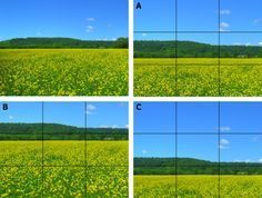 """""""The Rule of Thirds"""" by Andrew Dlugan. Interesting and helpful reading for budding, aspiring photographers. Photography Rules, Royal Photography, Landscape Photography Tips, Photography Lessons, Photography Projects, Best Landscape Photographers, Lightroom, Photoshop, Rule Of Thirds"""