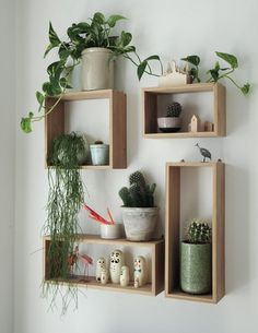 Playful storage becomes wall art and can house an abundance of plants